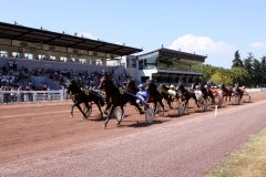 courses hippiques hippodrome photo f. perrot-164208 septembre 2014.jpg